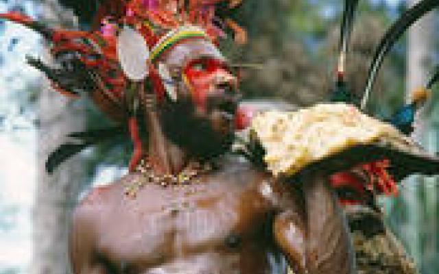 Eating pork fat. New Guinea Highland Pig Festival (Prof M O'Hanlon)