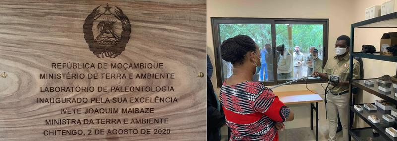 minister of land and environment of mozambique